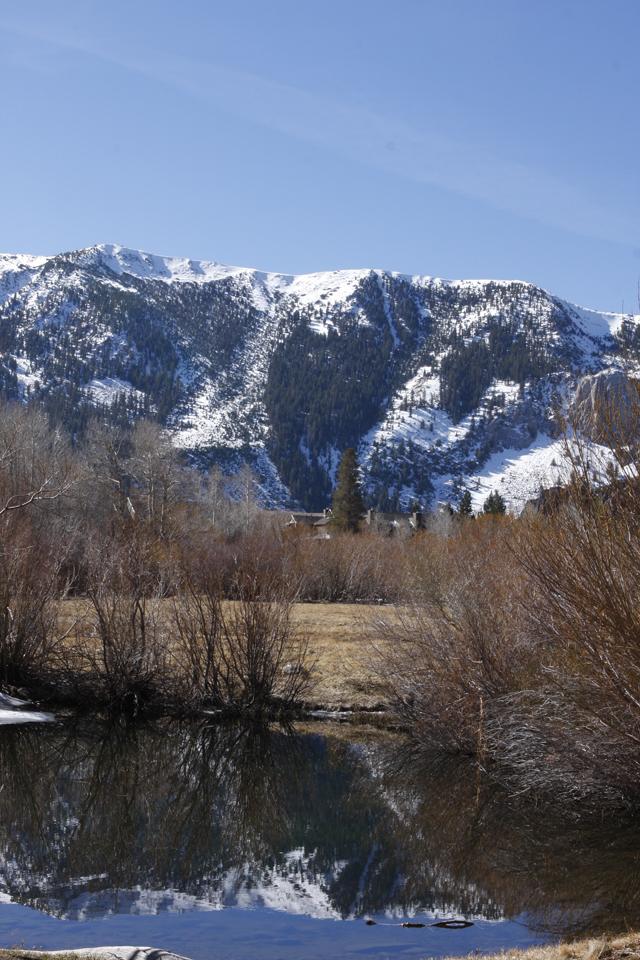 View near the Condo Mammoth Mountain